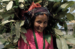 The Sundari communities in Nepal rely on forest products