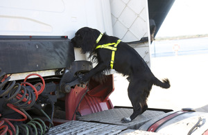A Border Force detector dog sniffing out and trouble at the UK border