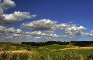 Image of green field with blue sky behind.