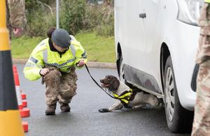 Военнослужащие используют военную служебную собаку для осмотра автомобиля перед саммитом лидеров G7.
