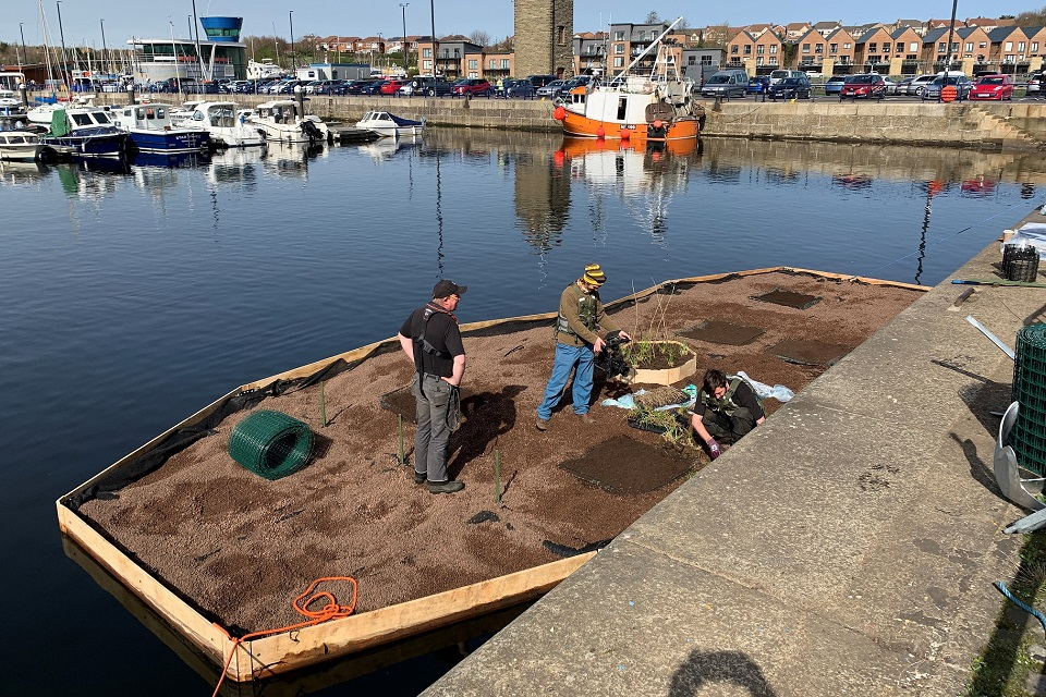 The image shows a floating ecosystem on the Royal Quays Marina
