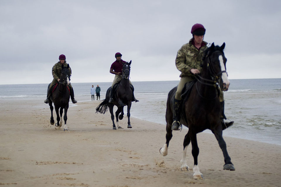 Horses of the Household Cavalry Mounted Regiment on Holkham beach