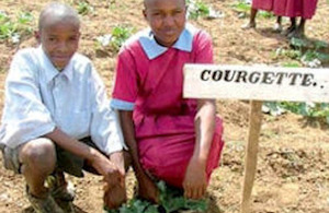 School children in Kenya benefit from the Gardens for Life project