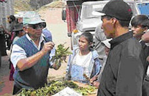 Daniel Vasques discusses peach problems with truck passengers in Bolivia