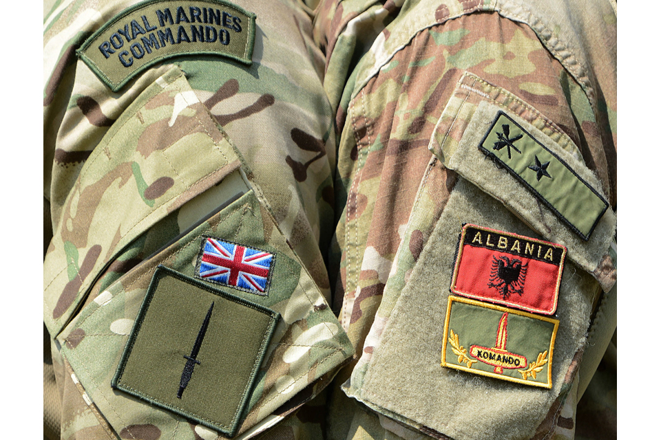 Badges of the Royal Marines and their Albanian counterparts