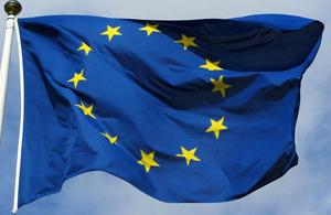 EU Flag by Bobby Hidy