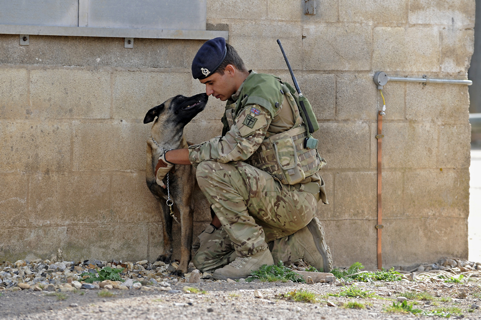 Private Danny Greenhalgh and military working dog Amy