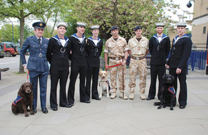 EJ with fellow assistance dogs and Service personnel