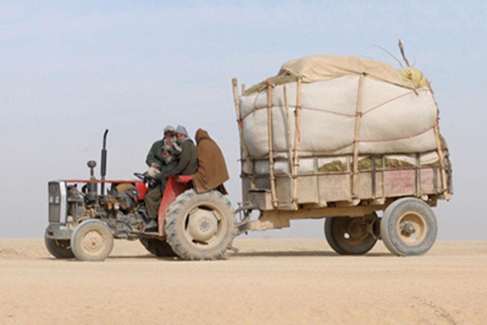 Farmers in Nad 'Ali