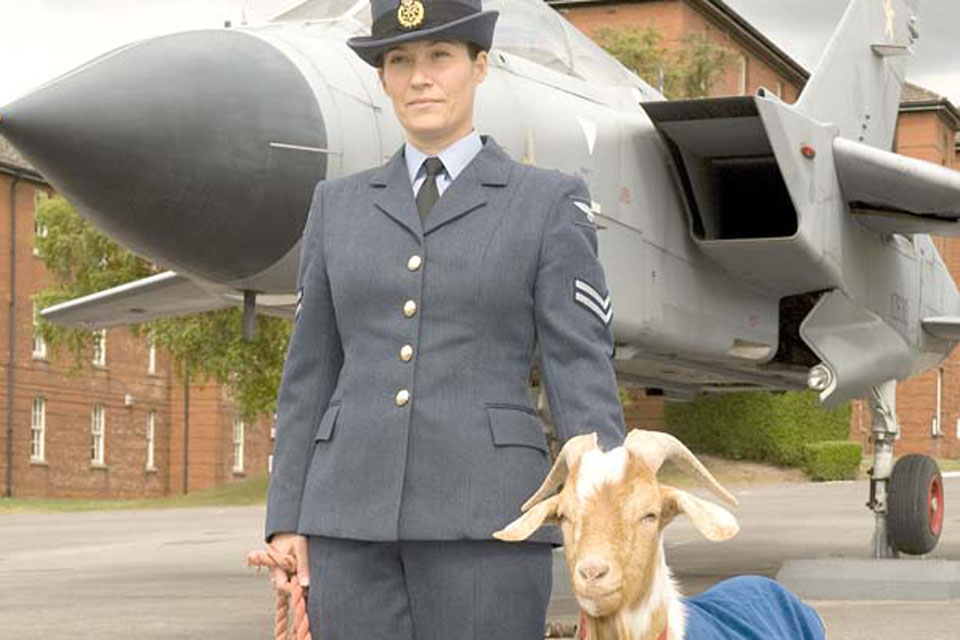 Aircraftman George is the latest in a long line of mascots at RAF Halton that dates back to World War Two