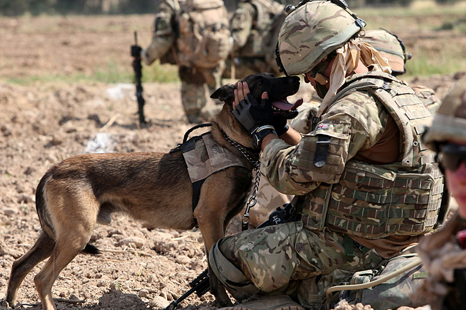 Lance Corporal Tom Welstand from 103 Military Working Dog Support Unit shares a moment with his search dog, Steegan
