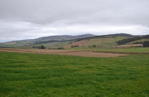 NE Farm