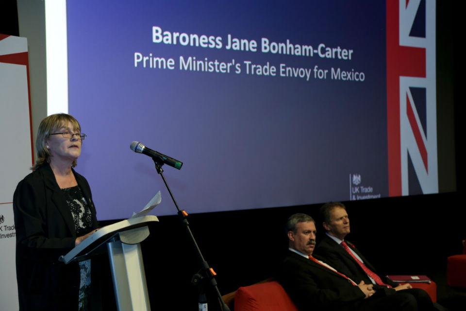 Baronesa Jane Bonham-Carter, Enviada Comercial del Primer Ministro de Reino Unido