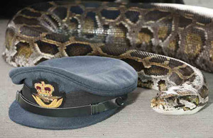 Squadron Leader Eric the Snake Aldrovandi alongside a Royal Air Force Commissioned Officer Hat