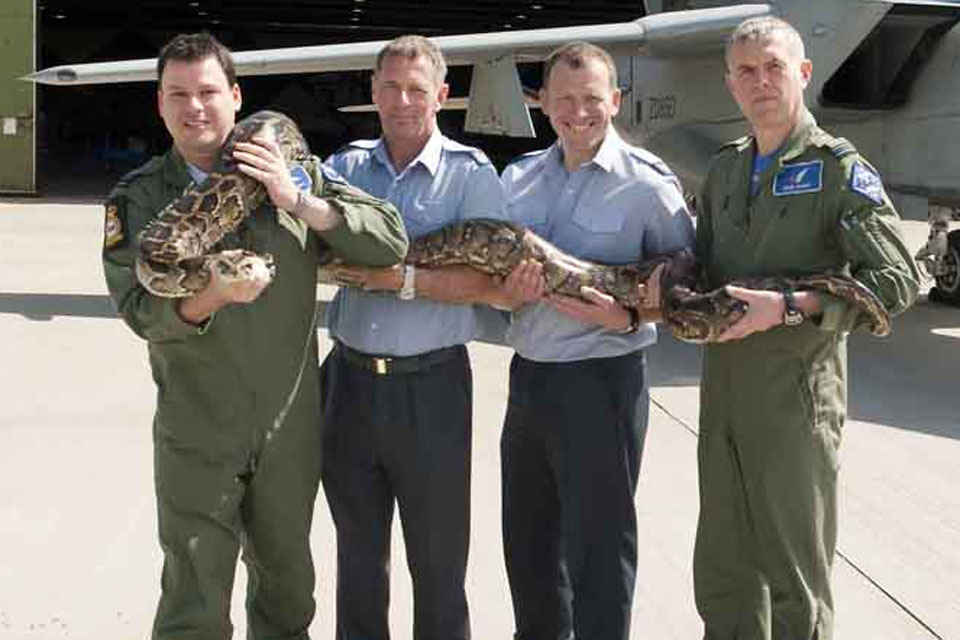Royal Air Force personnel supporting Squadron Leader Eric the Snake Aldrovandi, from left: Flight Lieutenant Wharry, Flight Sergeant LarkWorthy, Sergeant Coltman and Flight Lieutenant Barber