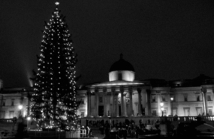 Christmas tree- Nelson's Column
