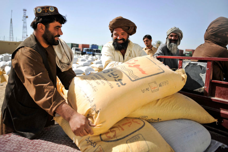 Afghan wheat farmers moving large bags of wheat.