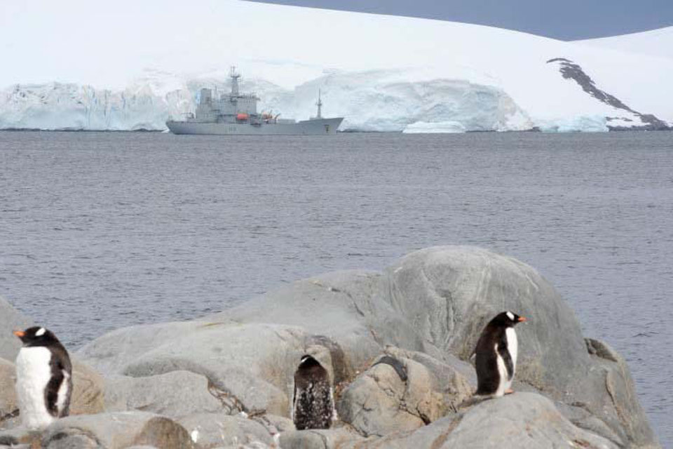 Gentoo penguins look on during HMS Scott's visit to Port Lockroy, Antarctica