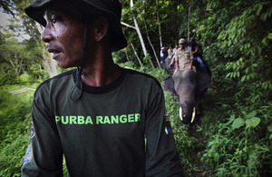 Forest rangers on patrol in Indonesia. Picture: Abbie Trayler-Smith/Panos Pictures/DFID.
