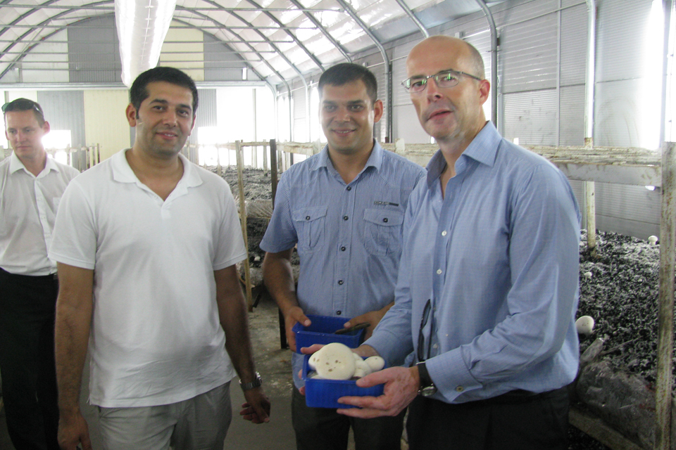 Ambassador's visit to Szendrőlád mushroom farm