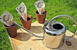 Watering can and money
