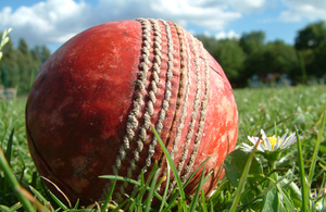 Cricket ball - image courtesy of cwgreeny used under Flickr creative commons