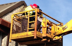 Installing a bespoke barn owl nesting box on the Ballykinler training area [Picture: Crown copyright]
