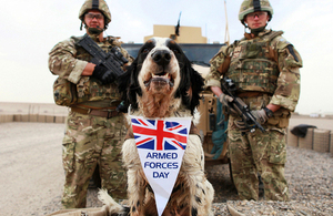 Air dog Memphis from the working dog section at Camp Bastion with 2 soldiers of the Royal Military Police (stock image) [Picture: Sergeant Alison Baskerville, Crown copyright]