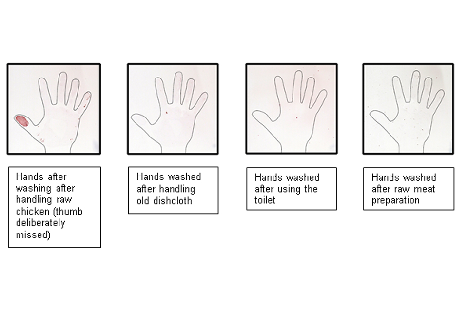 How the bacteria and viruses are removed with handwashing