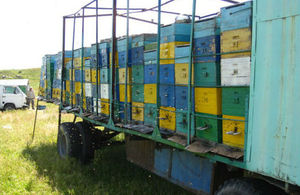Bee hives on a lorry