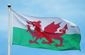 """Wales flag""`"