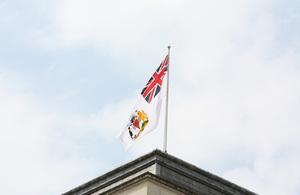 BAT Flag