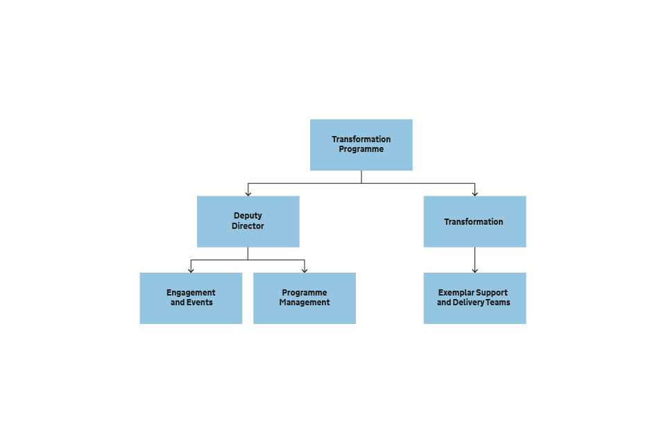 Figure 5 The structure of the Transformation Programme
