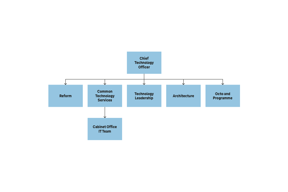Figure 6 Structure of the Office of the Chief Technology Officer