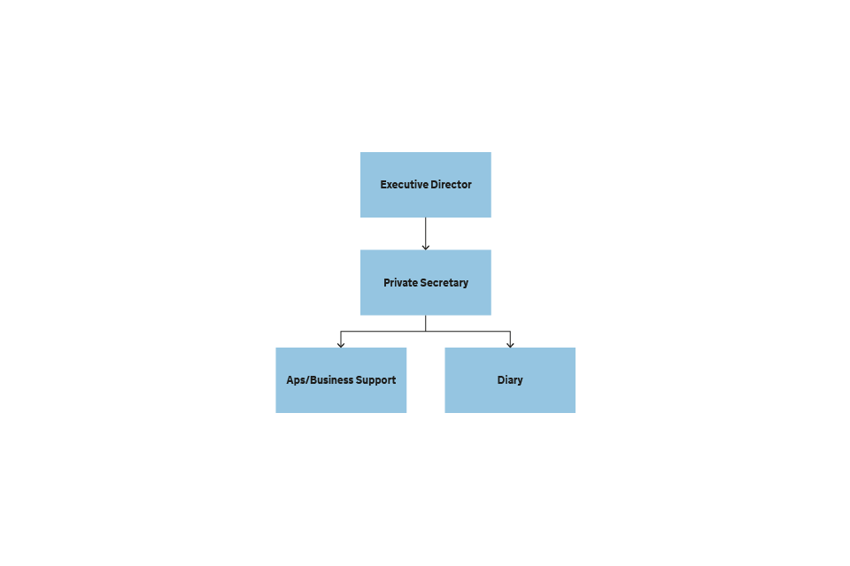 Figure 11 Structure of the Executive Director's Office