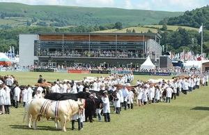 """Royal Welsh Show"""