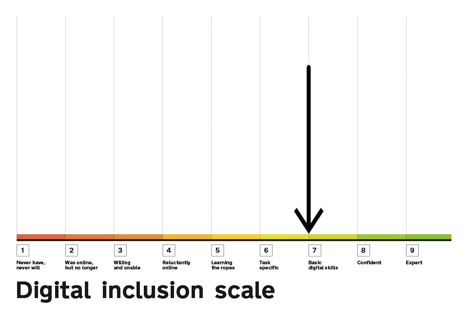 Digital Inclusion Scale highlighting point 7