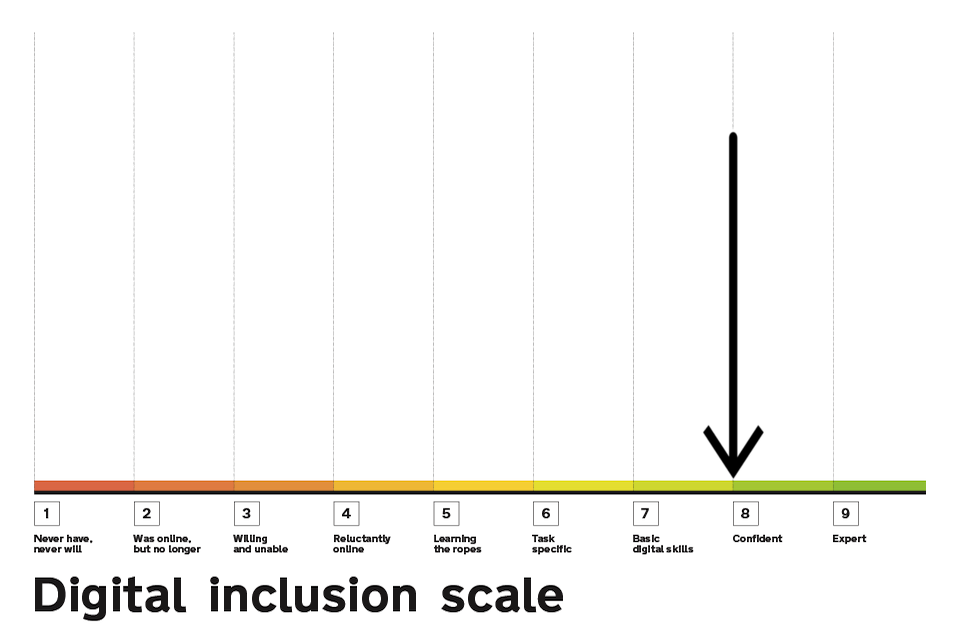 Digital Inclusion Scale highlighting point 8