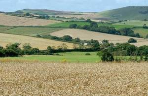 Landscape of arable farm land
