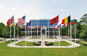 Flags of NATO countries [Picture: Crown copyright]