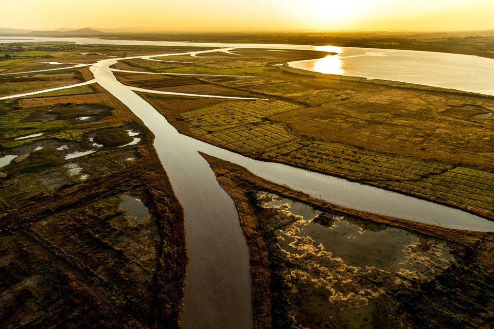 Sunrise 8 September 2014 and the high tide enters the newly created Steart Marshes