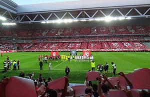 Grand Stade Lille Métropole LOSC first match - Credits: Liondartois - CC BY-SA 3.0