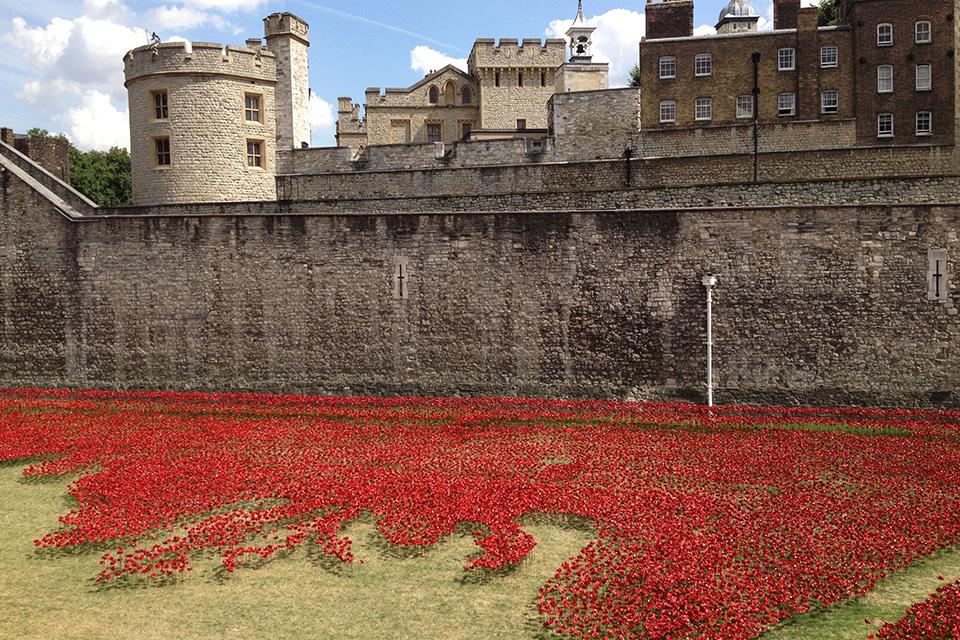 Tower of London, poppy installation, 2014