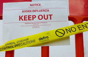 avian flu warning sign