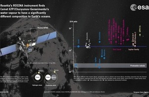 Rosetta inforgraphic.