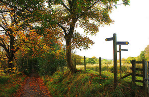 A country lane in autum with footpath signs