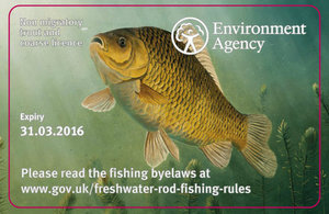 New designs for rod licences 2015/16 crucian carp