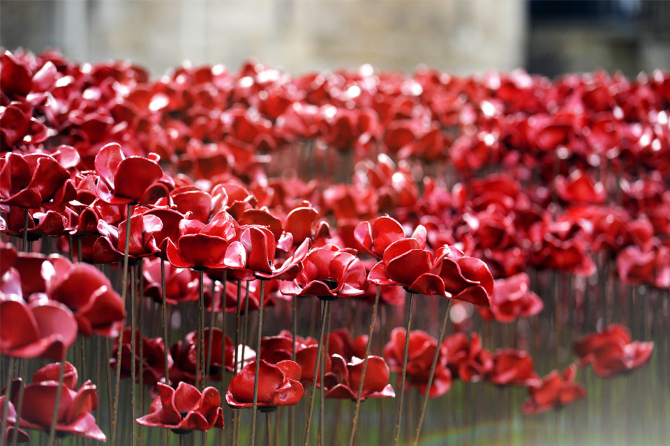 Field of remembrance of poppies at the Tower of London