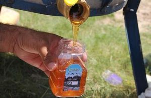 Helmand Honey