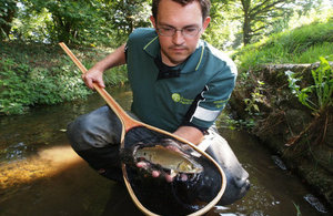 Environment Agency fisheries officer with a chub